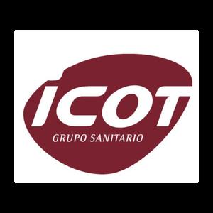 Logo icot