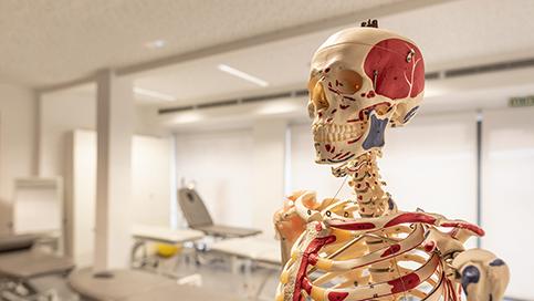 Instalaciones Fisioterapia Universidad Europea de Canarias